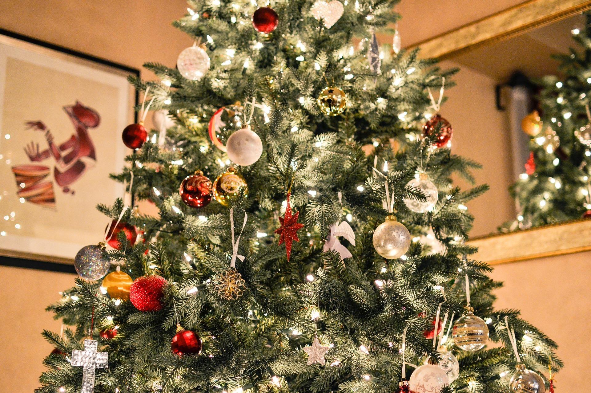 christmas-tree-1081981_1920